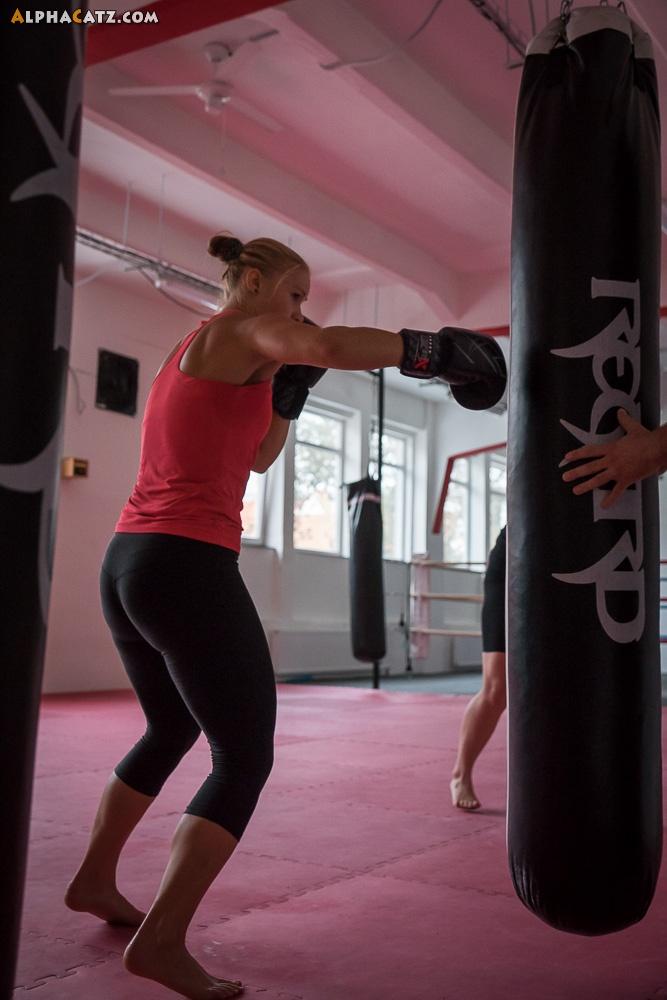 AlphaCatz - Boxing training
